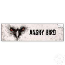 Angry Birds Bumper Sickers, Angry Birds Bumper Sicker Designs
