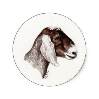 Nubian Goat Art Sticker