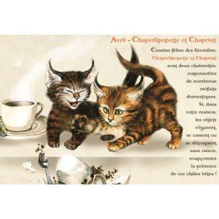 AGENDA SCOLAIRE LES CHATS ENCHANTES 2011/2012   Achat / Vente livre