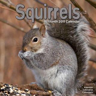 SQUIRRELS 2011 Wall Calendar