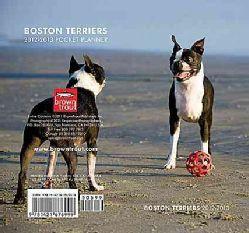 Boston Terriers 2012 2013 Two Year Pocket Planner (Calendar