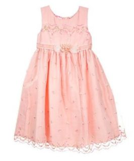 Little Bitty Embroidered Flora Holiday dress, 2T: Clothing