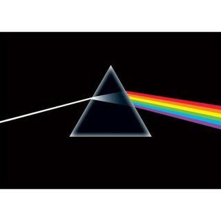 Pink Floyd, (Dimension  Maxi 91.5 x 61cm)… Voir la présentation