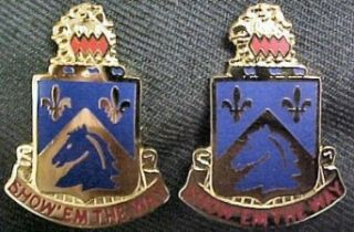 117th Cavalry Distinctive Unit Insignia   Pair Clothing