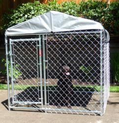Lucky Dog Champion Box Galvanized Chain link Box Kennel (4 x 5 x 5