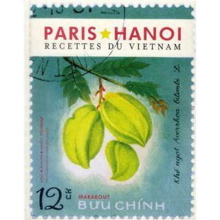 PARIS HANOI ; LES RECETTES DU VIETNAM   Achat / Vente livre Collectif