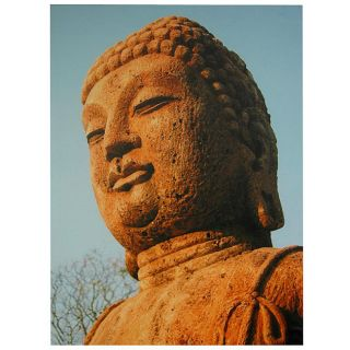 Rust Color Buddha Statue Canvas Wall Art (China) Today $28.00 5.0 (3