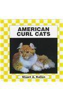 American Curl Cat (Cats Set II): Stuart A. Kallen: 9781562395780