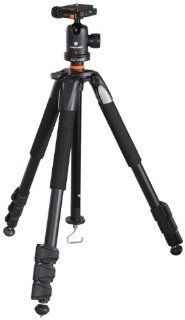 Vanguard Alta+ 234AB Aluminum Tripod with SBH 50 Ball Head