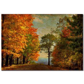 Lois Bryan Autumn on the Mountain Canvas Art