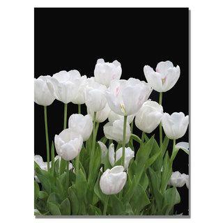Kathie McCurdy White Tulips Canvas Art