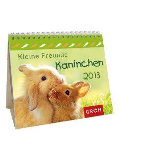 Kleine Freunde   Kaninchen 2013: Bücher