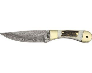 Marble Knives 31C Damascus Mini Hunter Fixed Blade Knife