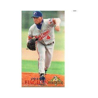 1994 Fleer Extra Bases #302 Joey Eischen Collectibles