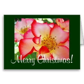 Merry Christmas! and Happy New Year cards Rose