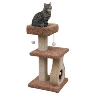 PetPal 21 x 19 x 38 in. Cat Furniture with Guitar Shape Toy & Platform